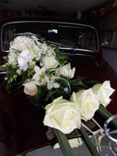 Blumen Bucher