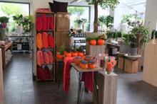 Vessa Floristik mit Ideen
