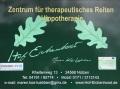 Logo Hof Eichenhorst Zentrum für therapeutisches Reiten