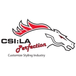 Logo CSI: LA Perfection