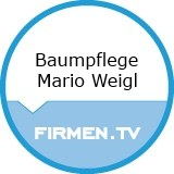 Logo Baumpflege Mario Weigl