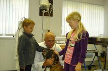 Fraunhoffer Manfred Prakt. Tierarzt