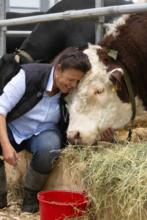 Ambulante Tierarztpraxis  Gabriela Kinder