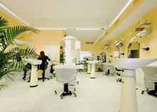 Salva´s Haarstudio