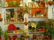 Moderne Floristik  Blumen Spies