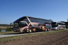 Wild Michael Busreisen