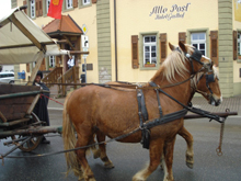 Hotel-Gasthof Alte Post