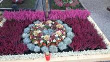 Florian Baier  Gartenbaubetrieb