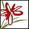 Logo Marina Kahn Heilpraktikerin