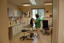 Tierarztpraxis Susanne Brey