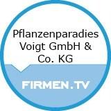 Logo Pflanzenparadies Voigt GmbH & Co. KG