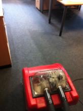 Teppichpflege ELZER RDT-Fachbetrieb