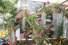 Garten & Floristik Prifling