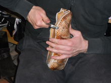 Schuhmacherei Poths & Ciaffoni