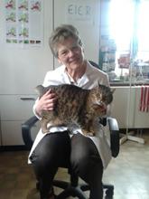 Kleintierpraxis Dr. Doris Schwer