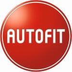 Logo Auto Holik  KFZ-Werkstatt Christian Holik & Hubert Holik GbR