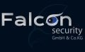 Logo Falcon security GmbH & Co.KG