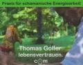 Logo Thomas Goller schamanische Beratung