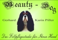 Logo Beauty-Dog