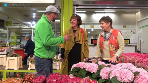 Filmreportage zu Blumen Art Waltraud Maisch