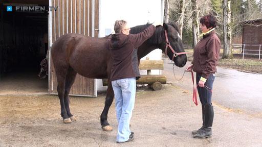 Videovorschau Akupunkt-Massage nach Penzel für Mensch, Pferd und Hund