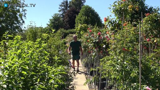 Videovorschau Baumschule u. Gartengestaltung Tobias Munz