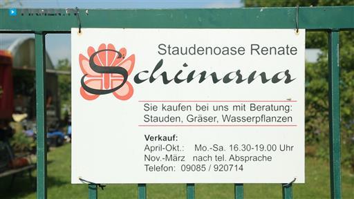 Filmreportage zu Staudengärtnerei Staudenoase  Renate Schimana
